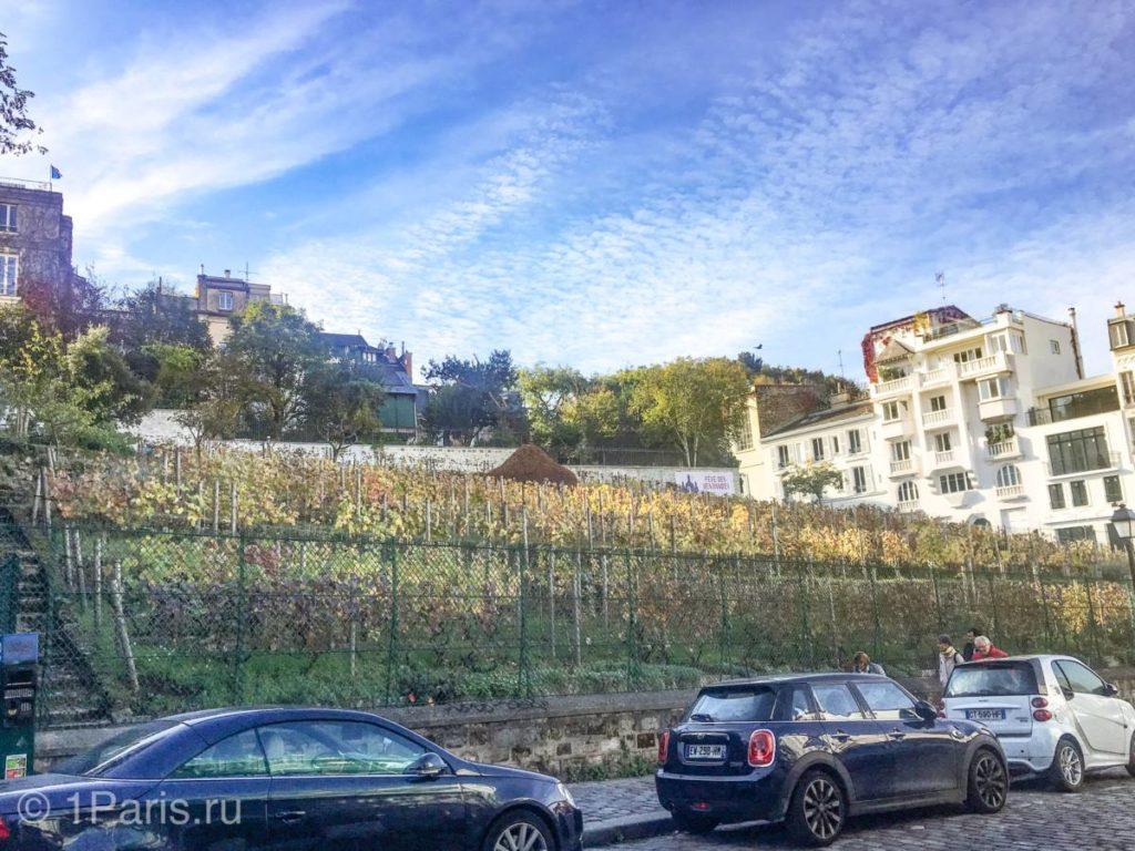 Виноградник на Монмартре